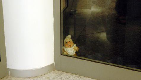 Un intruso alla festa... Dalla notte dell´11 maggio 2007 se ne sono perse le tracce...